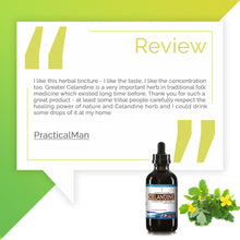Load image into Gallery viewer, Greater Celandine Tincture Extract, Bai Qu Cai, Chelidonium Majus Positive Effect on Stress - secretsofthetribe