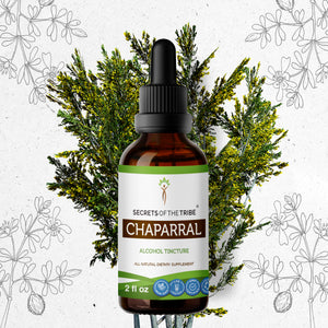 Chaparral Tincture Extract, Organic Larrea tridentata Reduction of Swelling on the Body - secretsofthetribe