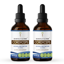 Load image into Gallery viewer, Cordyceps Tincture