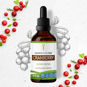 Cranberry Tincture Extract, Organic (Vaccinium Macrocarpon) Dried Berry - secretsofthetribe