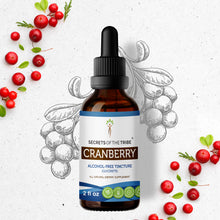 Load image into Gallery viewer, Cranberry Tincture Extract, Organic (Vaccinium Macrocarpon) Dried Berry - secretsofthetribe