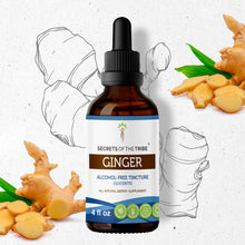 Load image into Gallery viewer, Ginger Tincture Extract,  May Help Relieve Nausea and Vomiting - secretsofthetribe