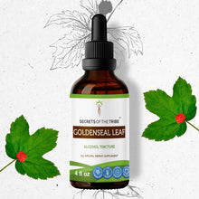 Load image into Gallery viewer, Goldenseal Leaf Tincture