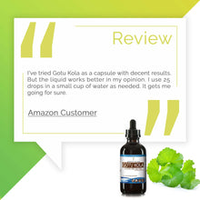 Load image into Gallery viewer, Gotu Kola Tincture Extract, Organic Centella Asiatica Promotes the Health of Hair and Skin - secretsofthetribe