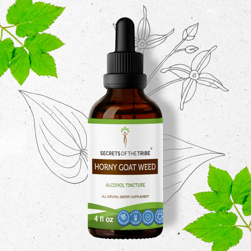 Horny Goat Weed Tincture Extract,Epimedium Grandiflorum, Barrenwort May Increase Testosterone Levels - secretsofthetribe