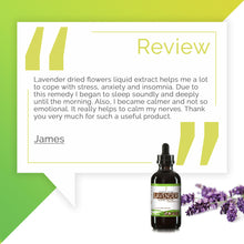 Load image into Gallery viewer, Lavender Tincture Extract, Organic Lavandula angustifolia May Reduce Inflammation in Your Body - secretsofthetribe