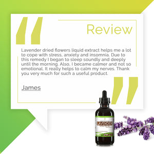 Lavender Tincture Extract, Organic Lavandula angustifolia May Reduce Inflammation in Your Body - secretsofthetribe