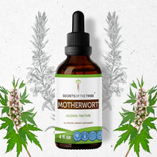 Load image into Gallery viewer, Motherwort Tincture