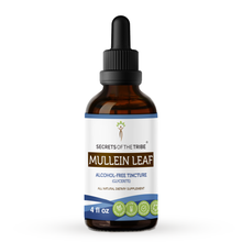Load image into Gallery viewer, Mullein Leaf Tincture