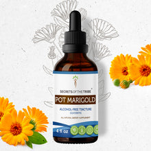 Load image into Gallery viewer, Pot Marigold Tincture