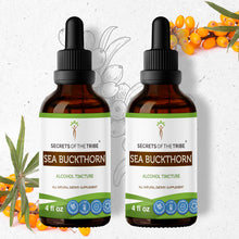Load image into Gallery viewer, Sea Buckthorn Tincture
