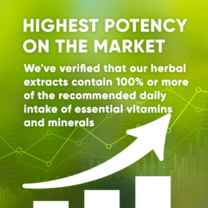 Barberry Root Tincture Extract, Organic Berberis Vulgaris Promotes Liver and Urinary Health - secretsofthetribe