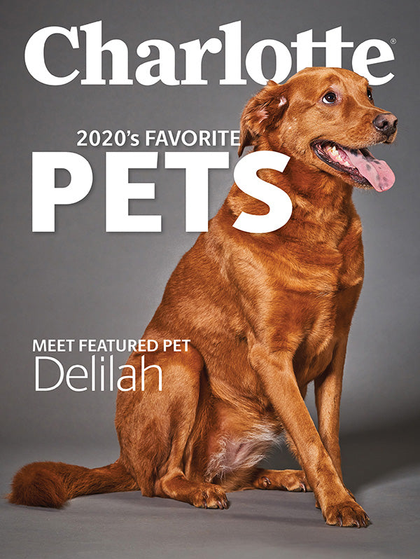 Delilah selected as Charlotte Magazine Pet of the Year