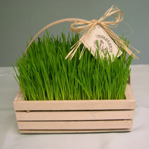 Wooden Easter Grass Basket