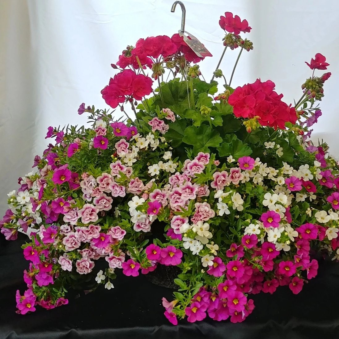 "City Basket 14"" Hanging Basket"