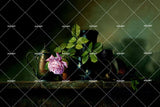 3D Flowers Painting Wall Mural Wallpaper SF04