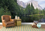 3D green forest lake wall mural wallpaper 41
