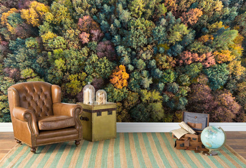 3D forest colored wall mural wallpaper