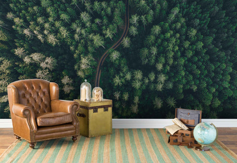 3D aerial photography forest wall mural wallpaper 149