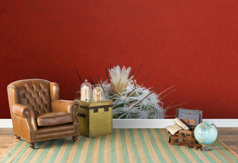 3D cactus ball red background wall mural wallpaper 49