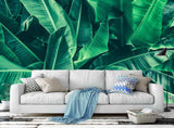 3D green tropical plants leaves wall mural wallpaper 148