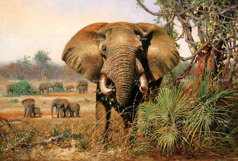 3D Realistic Grassland Elephant Tree Wall Mural Wallpaper LXL 1599