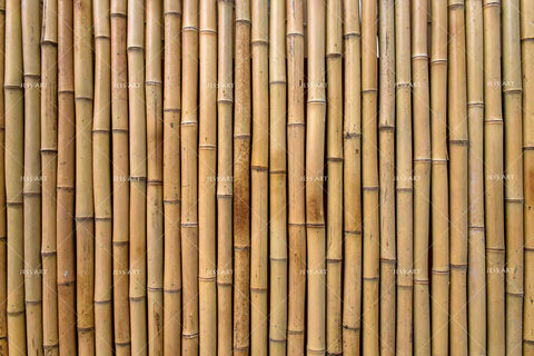 3D Bamboo Pattern Wall Mural Wallpaper 109