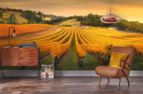 3D Golden Sunshine Vineyard Wall Mural Wallpaper 69
