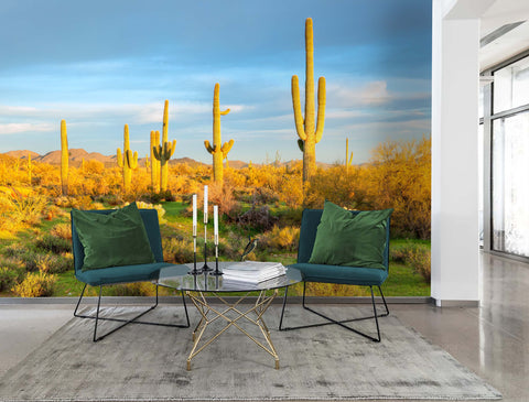 3D Yellow Cactus Field Wall Mural Wallpaper 10 - Jessartdecoration