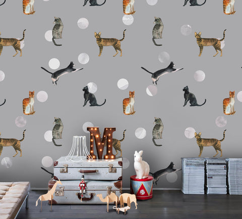 3D Cartoon Cat Dot Wall Mural Wallpaper 101
