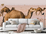 3D Camel Desert Wall Mural Wallpaper 22
