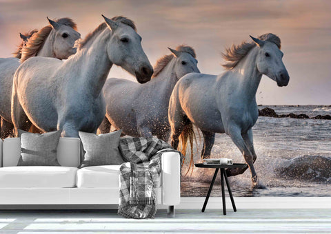 3D White Horses Camargue France Wall Mural Wallpaper 69