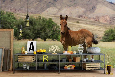 3D Young Horse Utah Pasture Wall Mural Wallpaper 75
