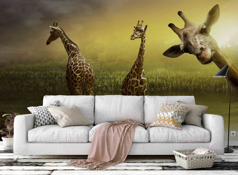 3D Giraffe Green Grass Wall Mural Wallpaper 53