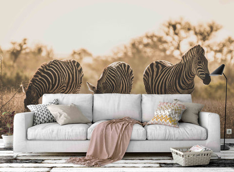 3D Zebra Grass Wall Mural Wallpaper 48