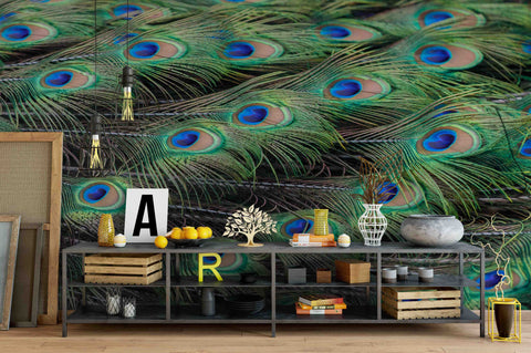 3D Peacock Feather Background  Wall Mural Wallpaper 15