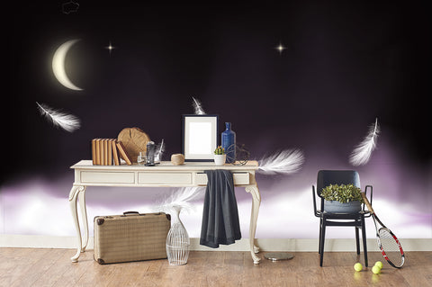 3D Moon Clouds Feather Wall Mural Wallpaper 2