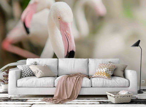 3D White Flamingo Wall Mural Wallpaper 73
