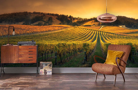 3D Sunset Vineyard Wall Mural Wallpaper 40