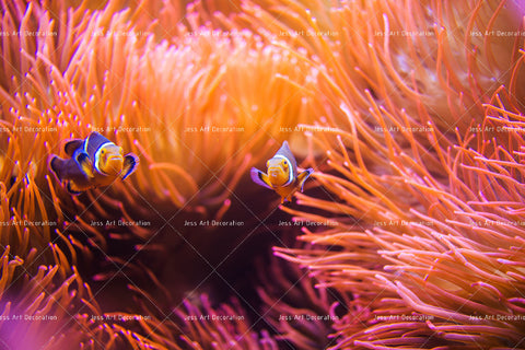 3D Tropical Coral Fish Wall Mural Wallpaper 12
