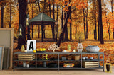 3D autumn sunny landscape wall mural wallpaper 12