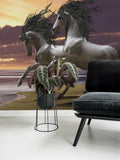 3D Grey Horse Sky Wall Mural Wallpaper 125