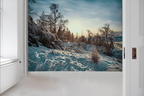 3D Snow Forest Sky Wall Mural Wallpaper 59