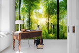3D Sunshine Green Jungle Wall Mural Wallpaper 18