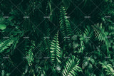3D tropical leaves wall mural wallpaper 04