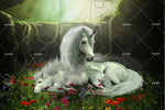 3D White Unicorn Wall Mural Wallpaper 157