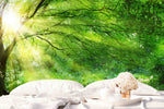 3D Green Jungle Sunshine Wall Mural Wallpaper 23