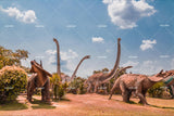 3D Dinosaur Sky Wall Mural Wallpaper 48