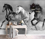 3D Black and white, Steed Wallpaper