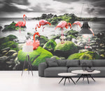 3D Black and white background, Wetland, Flamingo Wallpaper